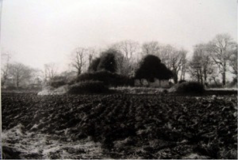 The ruin of Grange Abbey set in ploughed land around 1980. (Late WB Walsh)