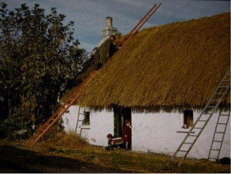 Tommy Feely thatching his cottage on Grange Road around 1960 (Ian Elliott)